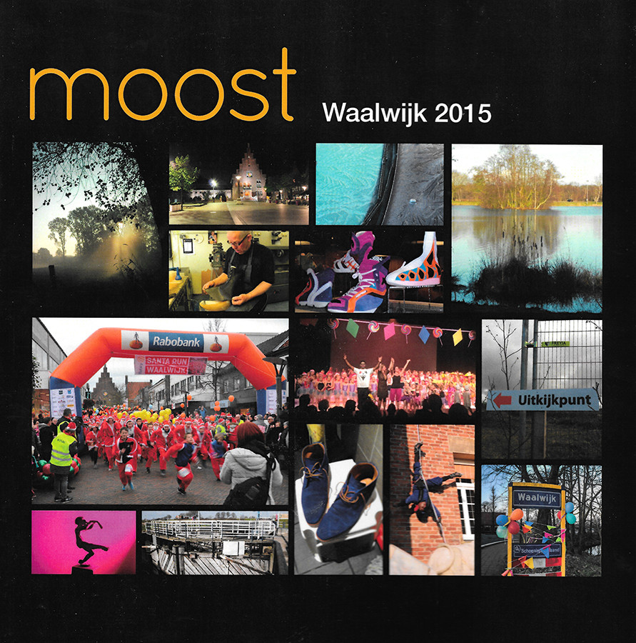 Cover of Moost Waalwijk 2015